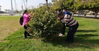 Mersin Büyükşehir Belediyesi?nden Çevre ve Doğa Dostu Bir Proje Daha