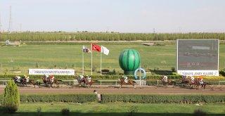 8. Diyarbakır Kültür ve Karpuz Festivali etkinlikleri başladı