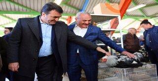 Türkiye'nin En Modern Kuş Pazarı Osmangazi'de