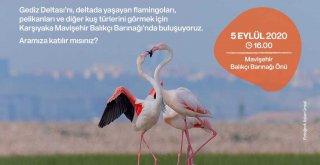 İzmir'de Gediz Deltası'na Sadakat Yürüyüşü