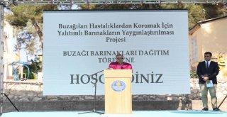 Mersin Büyükşehir'den Buzağı Barınağı Desteği