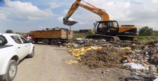Sakarya Nehri'ndeki kontroller artıyor