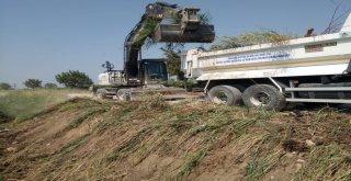 Yerleşim Yerleri ve Tarım Arazileri Dere Temizlik Çalışmaları İle Korunuyor