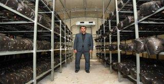 Büyükşehir Çiftçiye Umut Olmayı Sürdürüyor