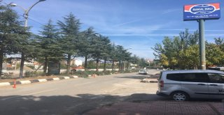 Demirci'de Ağaç Budamaları Gerçekleştiriliyor