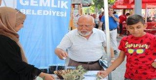 FESTİVALE ZEYTİNLİ DAVET