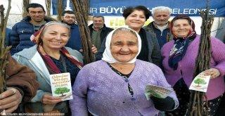 izmir Büyükşehir'in meyve fidanı dağıtımı 4 milyona koşuyor