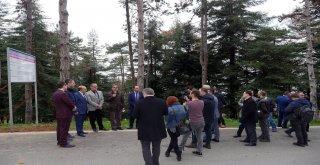 Atatürk Köşkü Ormanı Koruma ve Rehabilitasyon Projesi kamuoyuna açıklandı