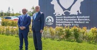 Vali Atik ve Başkan Zolan'dan sevimli dostlara ziyaret
