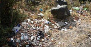 Daha temiz çevre için çöp topladılar