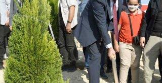 Başkan Seçer, Fidanı Toprakla Buluşturup Can Suyu Verdi