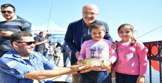 Avlu Balıkesir'de hafta sonunda düzenlenen 'Yakala-Sev-Bırak' organizasyonuna yüzlerce Balıkesirli katılırken, tutulan balıklar tekrar suya bırakıldı.