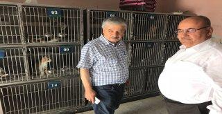 Başkan Hasan Can'dan Ümraniye Belediyesi Hayvan Bakım ve Rehabilitasyon Merkezine Ziyaret