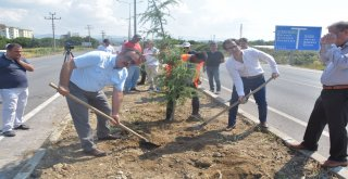 Daha yeşil bir Balıkesir için Balıkesir Büyükşehir Belediye Başkanı Zekai Kafaoğlu'nun talimatıyla ana arterlerdeki yollarda da çalışma başlatan Kent Estetiği Dairesi Başkanlığı son olarak Burhaniye -