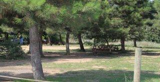 Piknik Sezonunda Ümraniye Mesire Alanına Yoğun İlgi