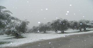 Belediyeden karla mücadele başladı