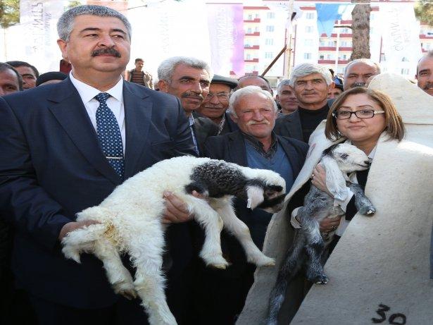 GAZİANTEP BÜYÜKŞEHİR'DEN ÜRETİCİYE  DESTEK!