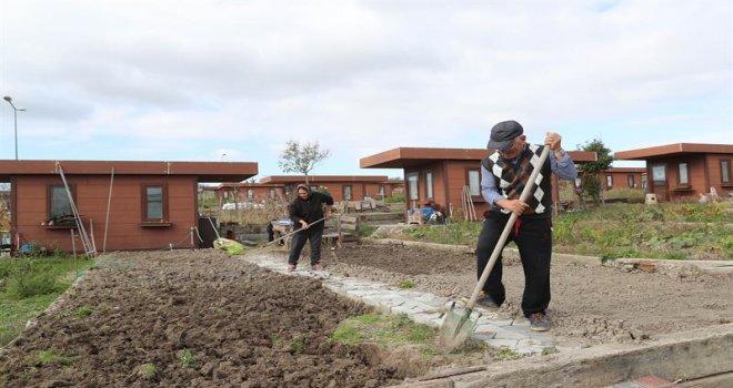 Şehrin Stresinden Uzakta Sebze Meyve Yetiştiriyorlar