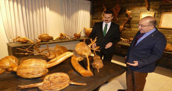 İşadamı Sözen'in 20 yıldır topladığı  ağaç kökleri Trabzon'da müze oldu
